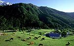 agriculture biodiversité