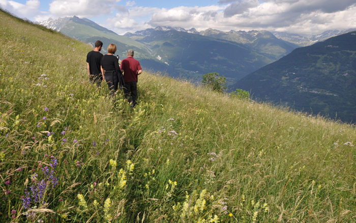 Contrat Territoire de Savoie