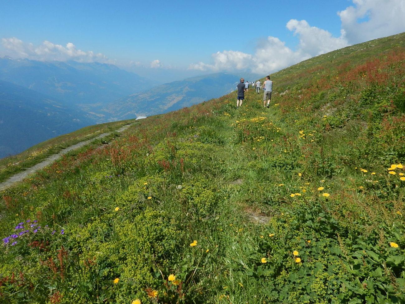 Visite sur l'alpage de Prariond